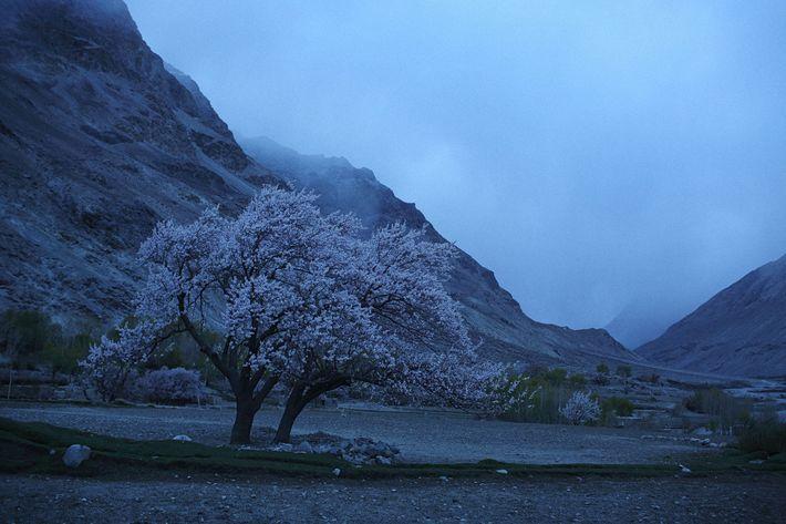 L'aube à Warzuds, un village dans le corridor du Wakhan, une des régions les plus isolées ...