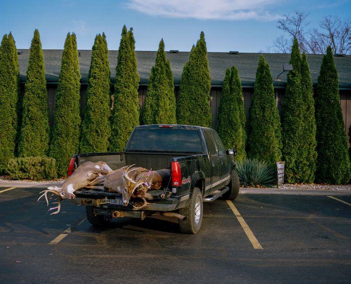 Des chasseurs apportent les premiers cerfs de Virginie tués lors de la saison de chasse au ...