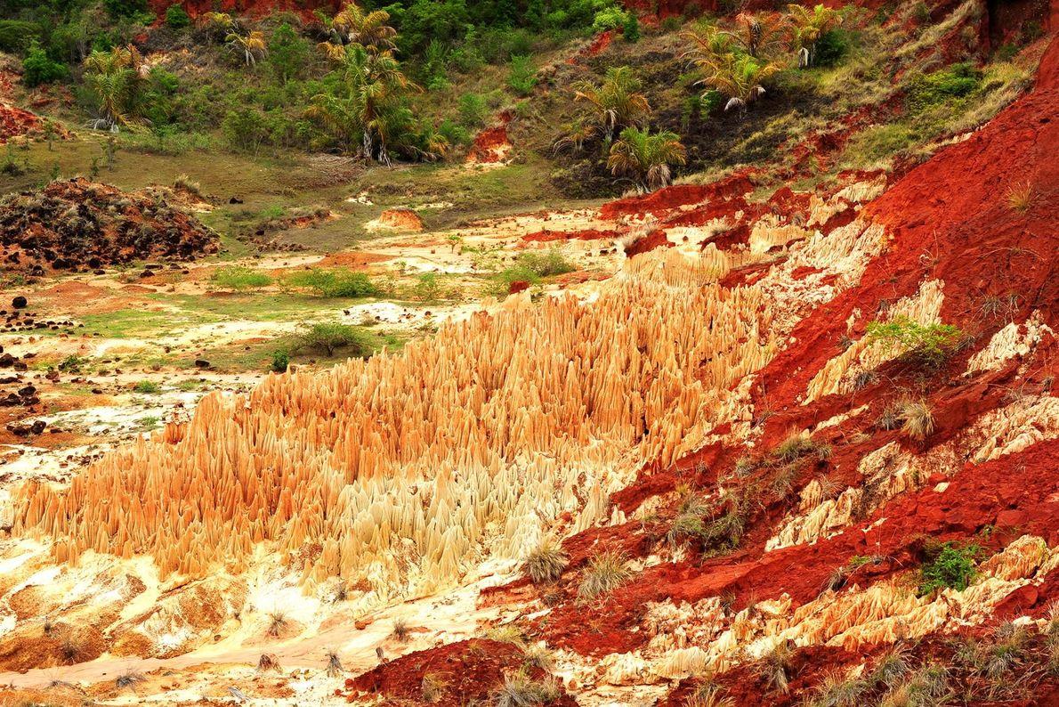 Situé non loin de Diego Suarez, à Madagascar, le Tsingy Rouge présente des flancs de roches ...