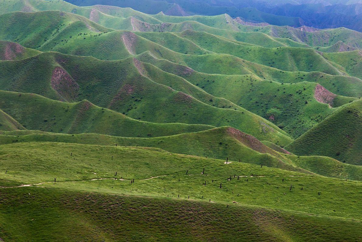 Les collines verdoyantes de Turkmen Sahra dans la Province de Golestan, en Iran.