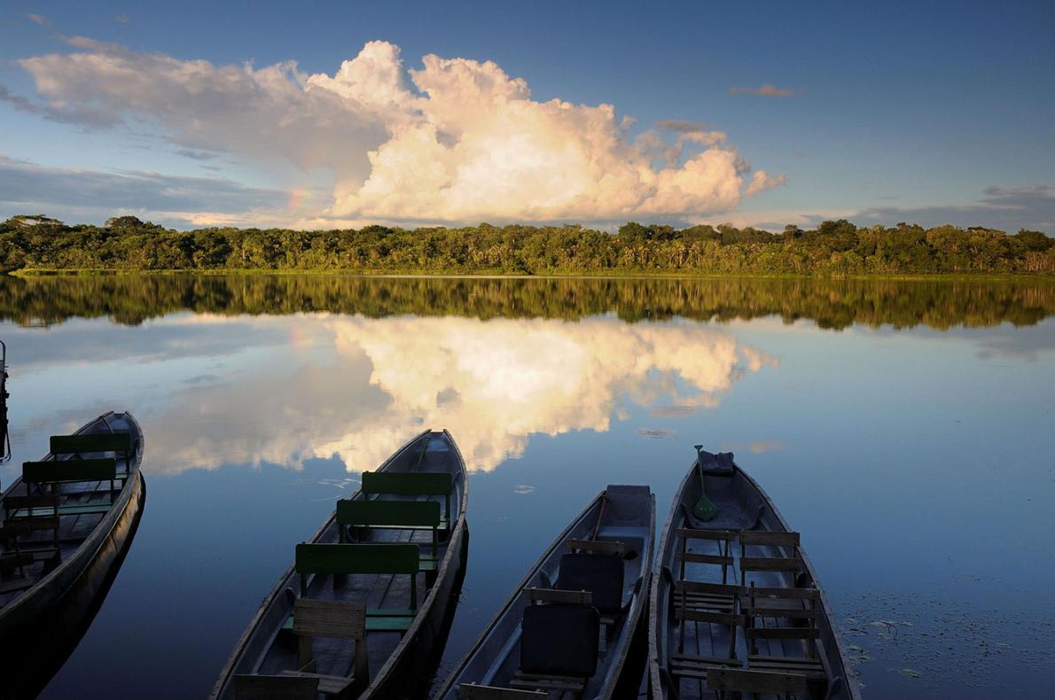 Le circuit de 10 jours « Ecuador Andes & Amazon » proposé par International Expeditions débute ...