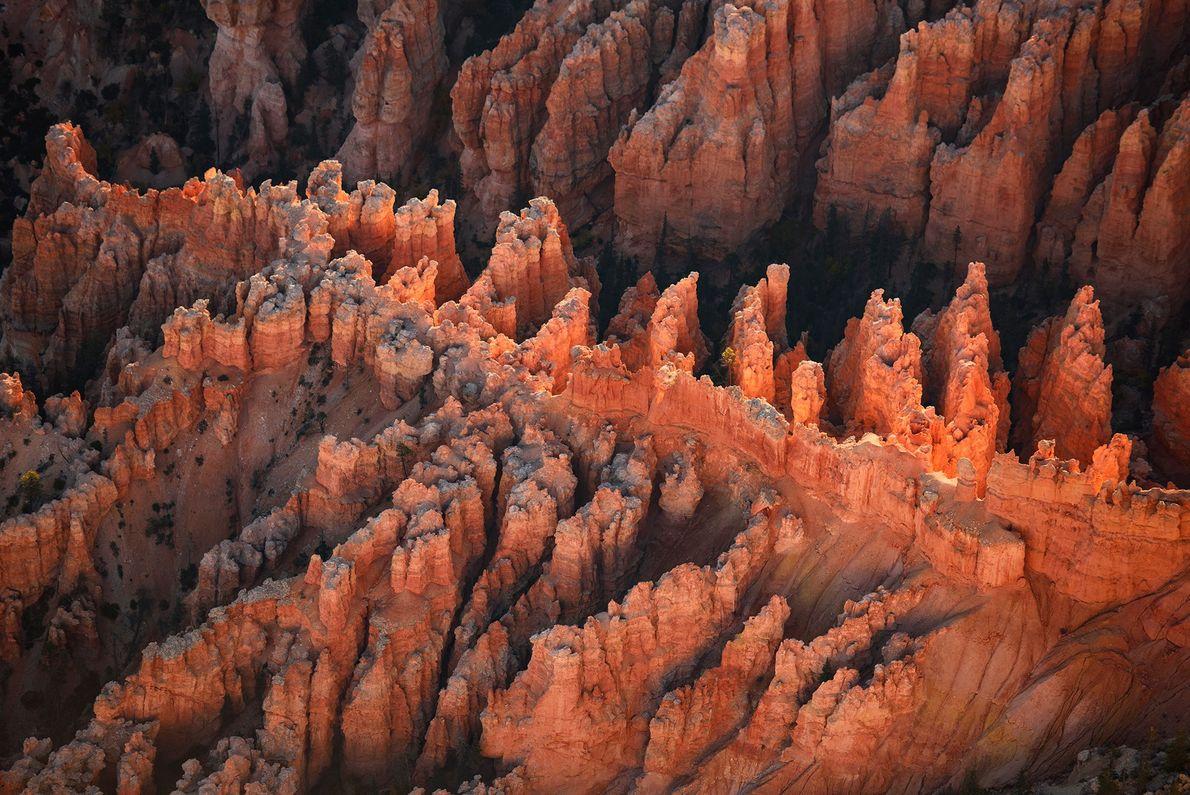 Lever de soleil sur le parc national de Bryce Canyon.