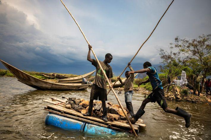 Les lacs des Virunga étaient jadis le territoire de la plus grande population d'hippopotames mais le ...