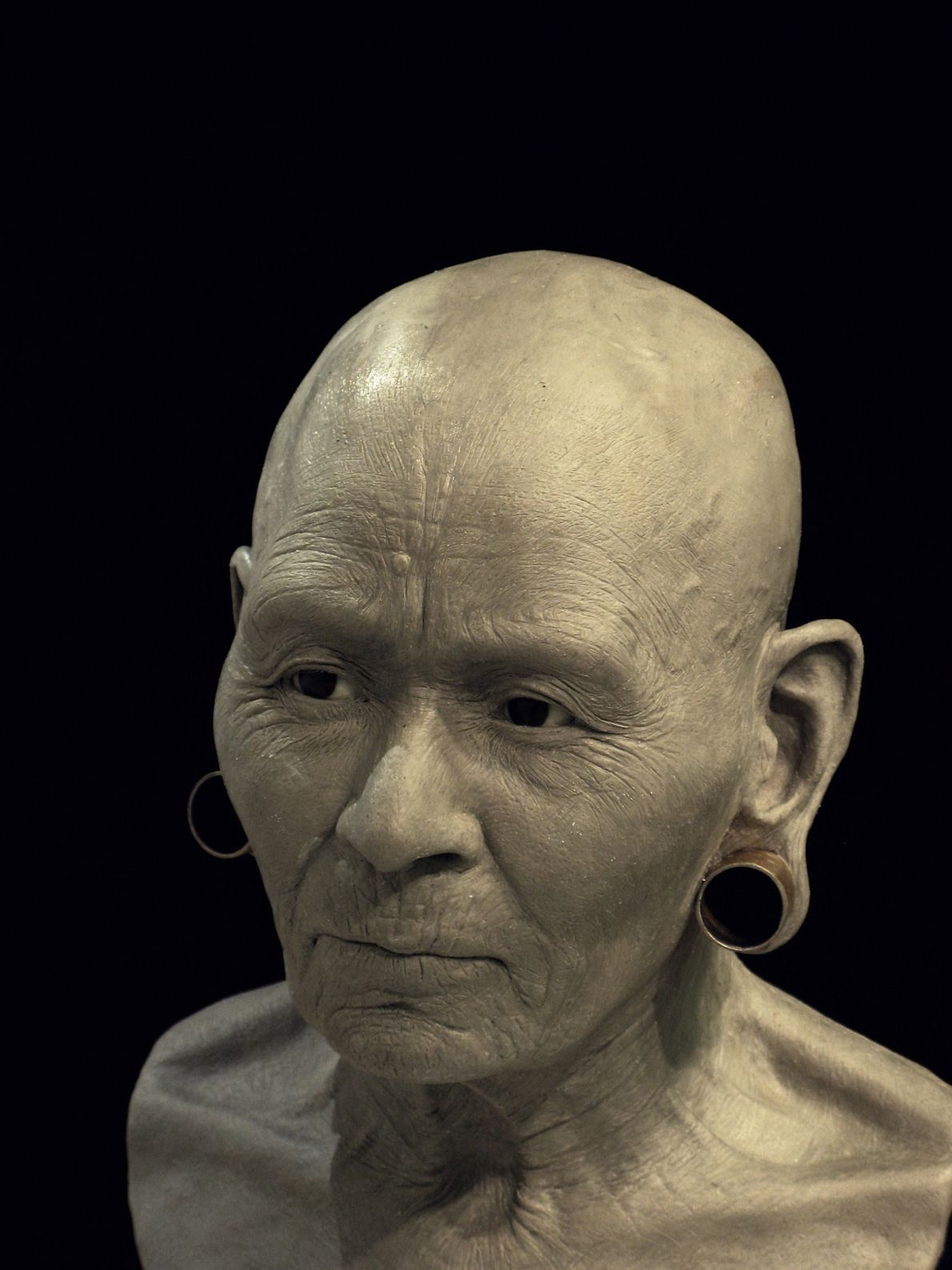 Une cheville supplémentaire a été utilisée pour modeler la peau et les tissus superficiels.