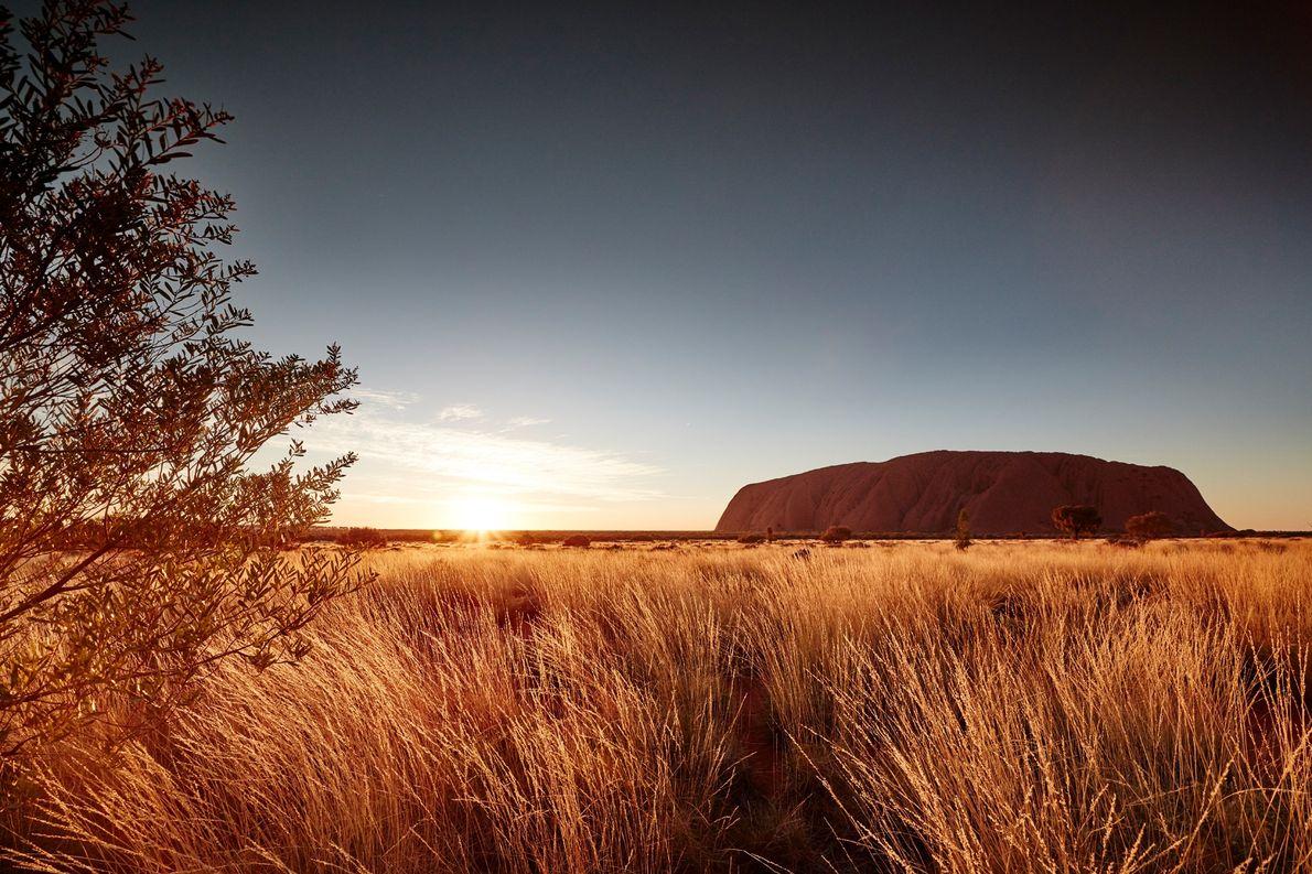 Uluru semble changer de couleur à l'aube et au crépuscule.