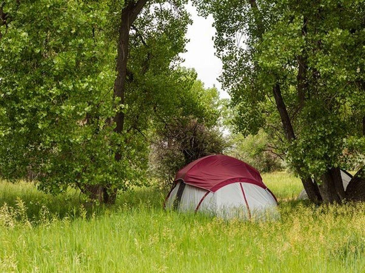 Photo de campeurs dans le Parc de Cherry Creek (Colorado)