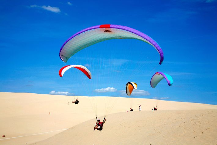 Un groupe de pilotes de parapente survole les crêtes dorées de La Grande Dune du Pyla.