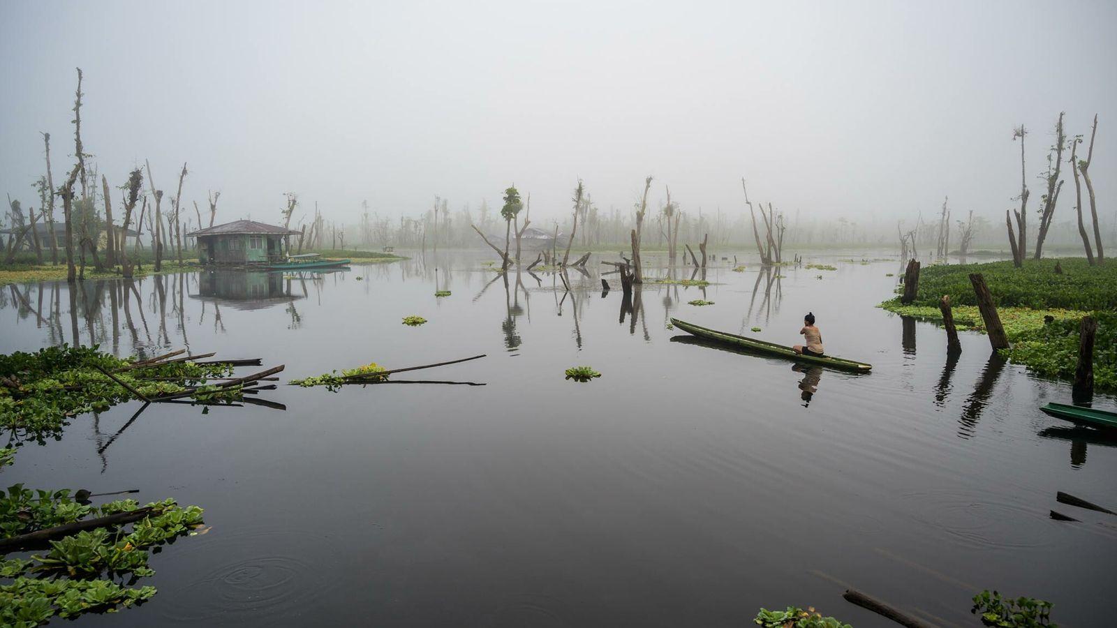 Sur les 15 000 personnes qui vivent dans le marais d'Agusan, environ 60 % appartiennent au peuple autochtone local ...