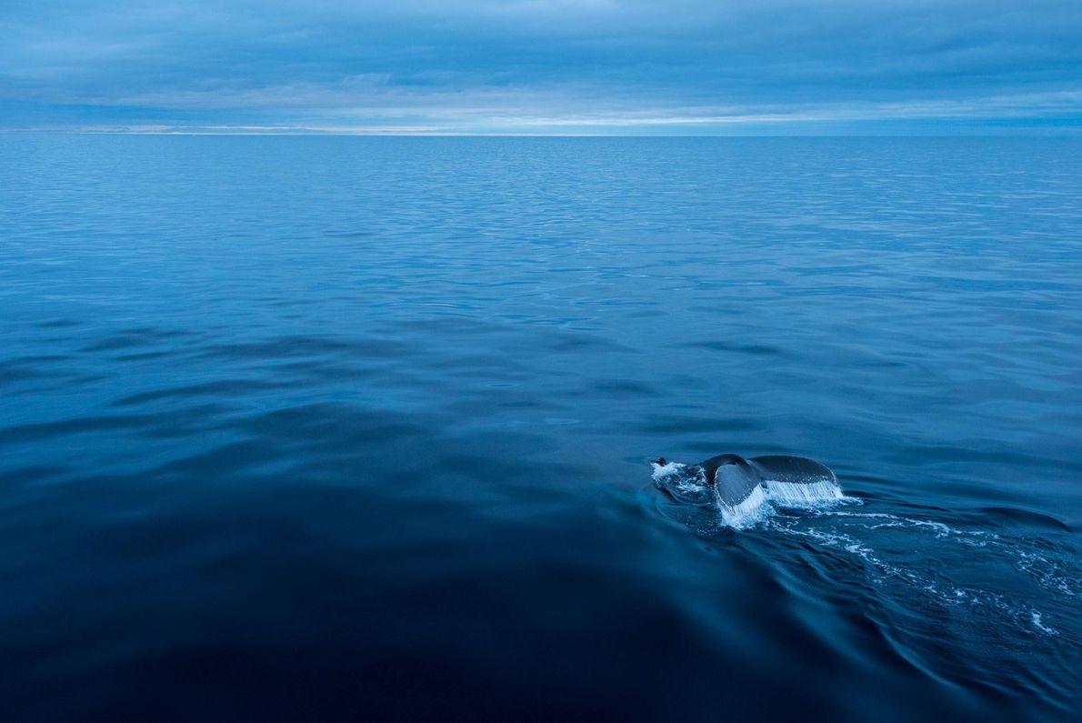 Chant de la mer