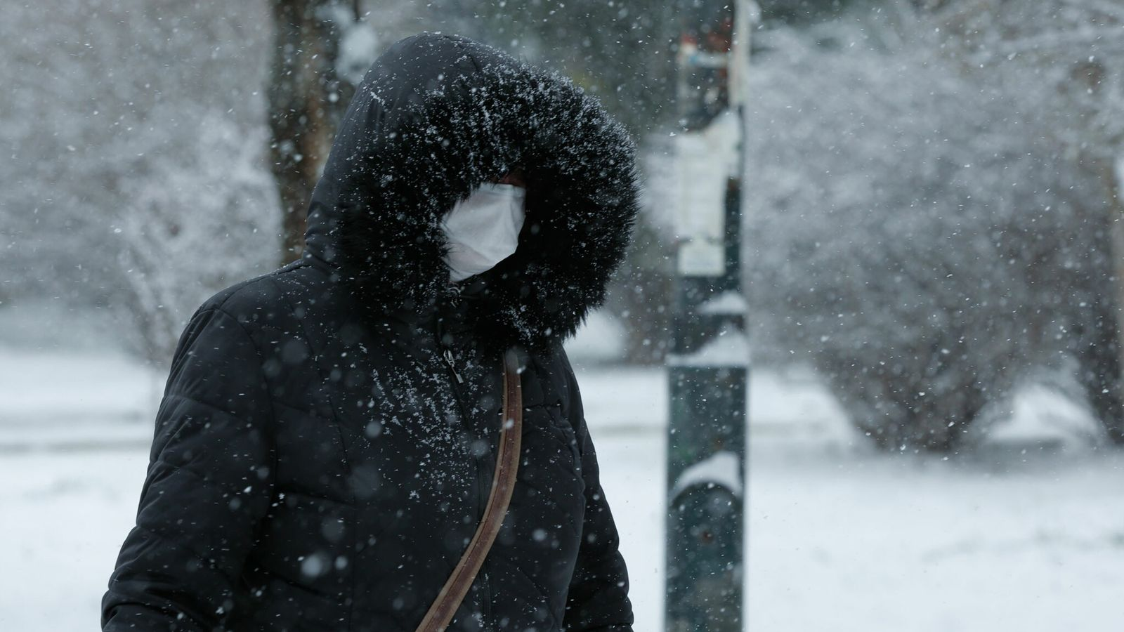 Les changements de saisons affectent les structures physiques des virus ainsi que les barrières naturelles de ...