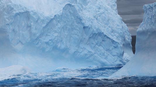 Ces femmes changent la face de l'exploration polaire