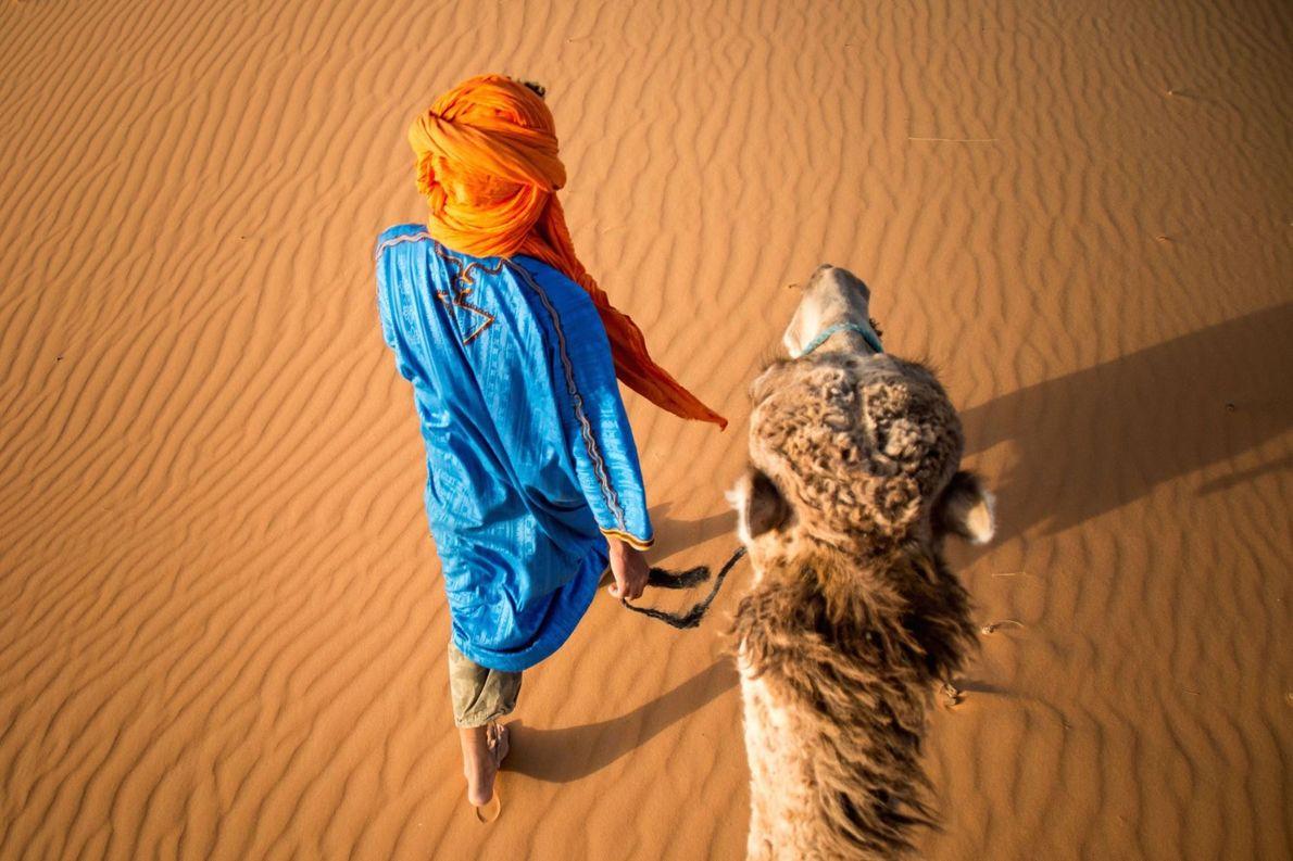 « Youssef et son dromadaire Bobmarli avancent entre le petit village de Merzouga et les dunes ...