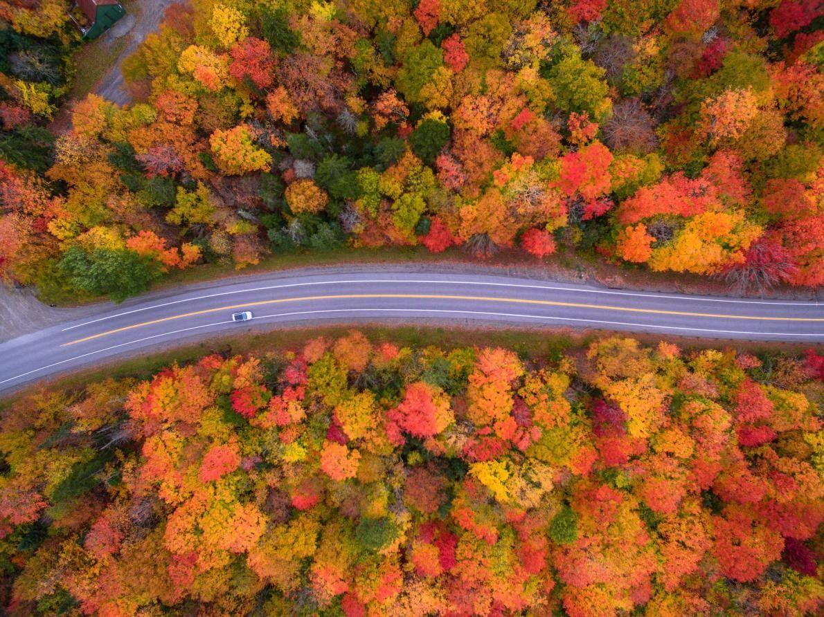 « Cette photo est une vue aérienne de la route pittoresque et des superbes couleurs automnales ...