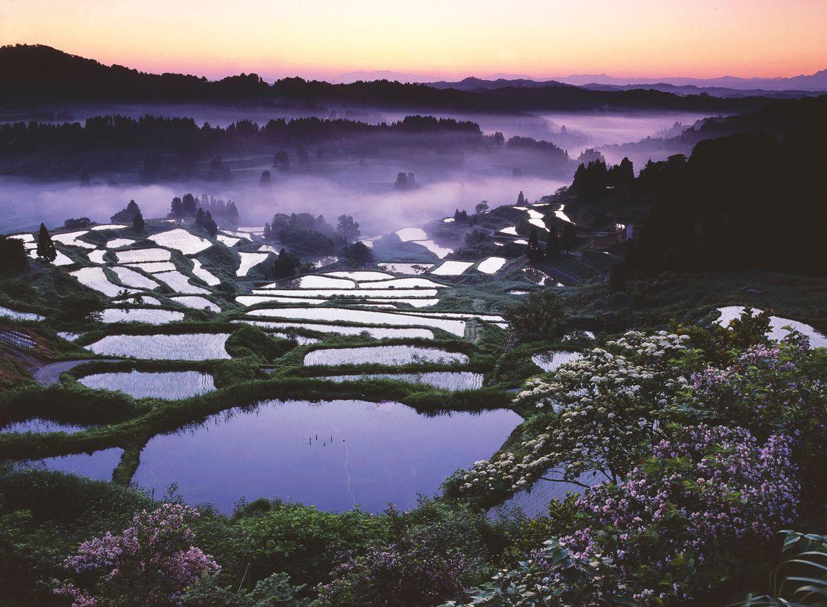 La ville de Tokamachi, dans la préfecture de Niigata, sur l'île de Honshū, est parsemée de rizières en ...