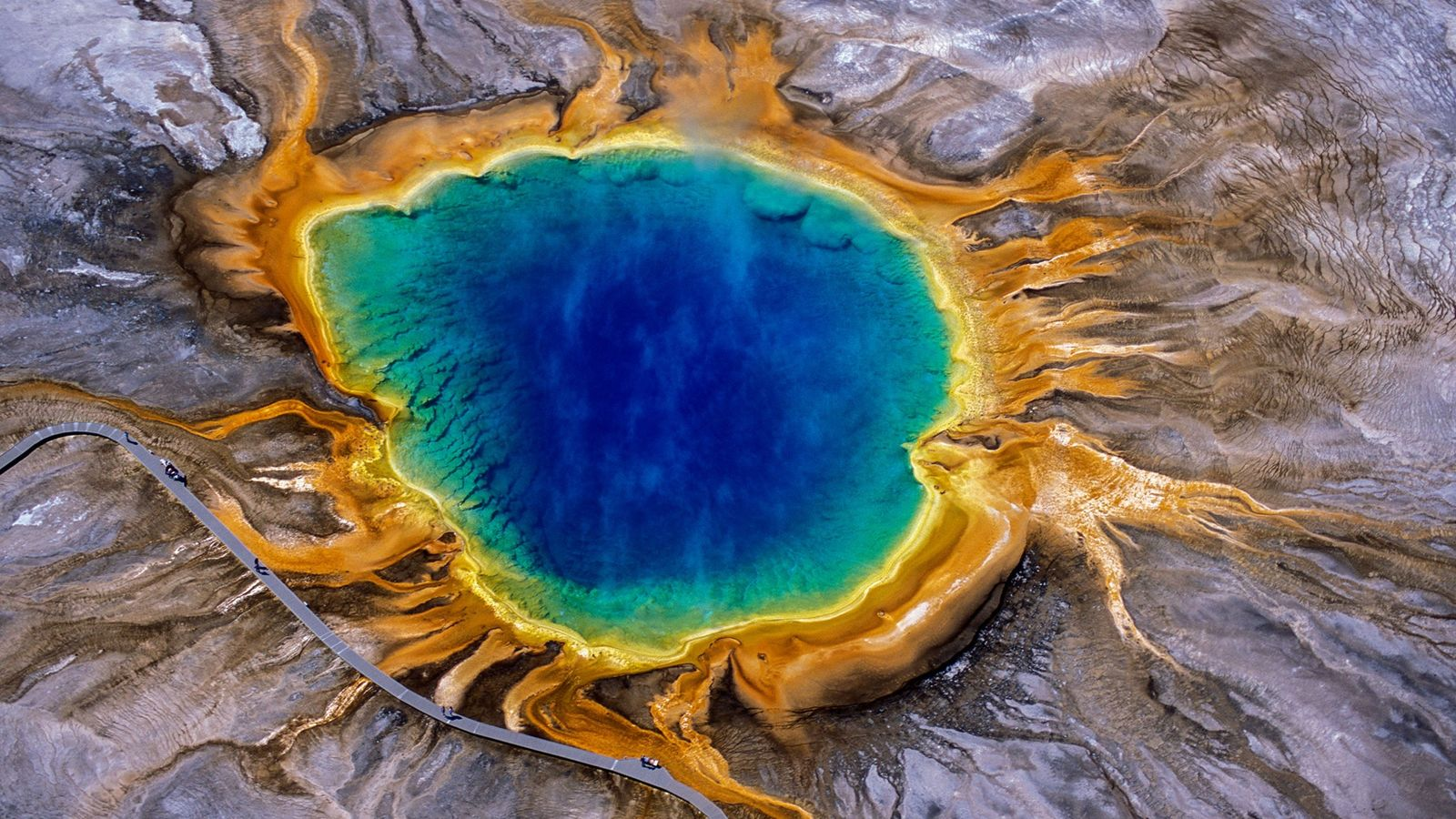 De la vapeur s'élève du Grand Prismatic Spring, l'une des surfaces hydrothermales les plus fascinantes du ...