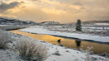 Il a neigé sur Yellowstone le premier jour de l'été