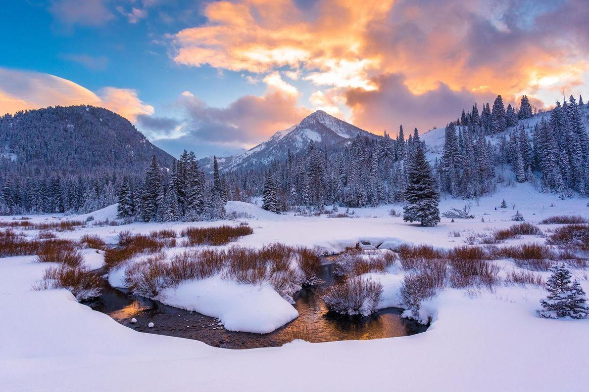 Dans l'Utah, la vallée enneigée du Big Cottonwood Canyon se dévoile avec féérie.