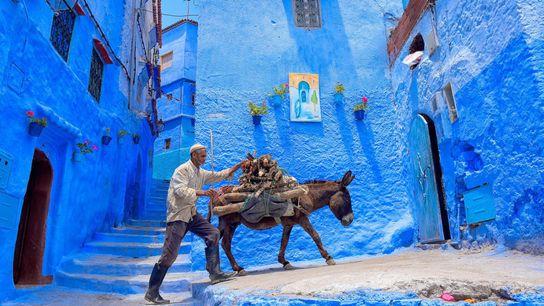 La ville de Chefchaouen, située au nord-ouest du Maroc, est célèbre pour sa vieille ville et ...