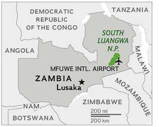 La rivière Luangwa tourbillonne et serpente sur près de 800 km en Zambie orientale, elle forme ...
